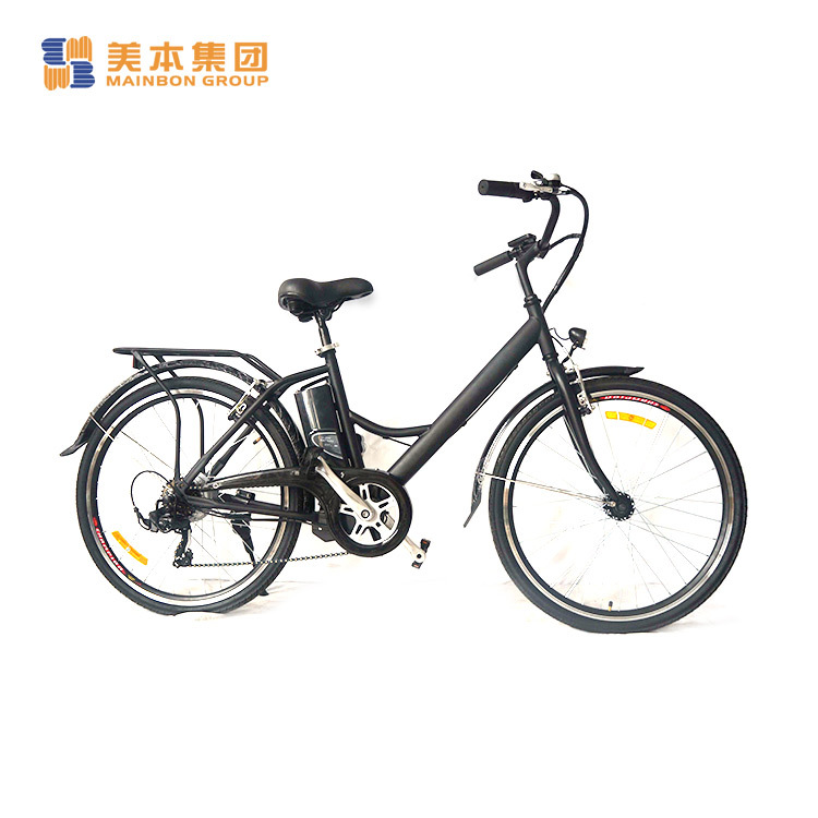 Custom New Electric Bicycle City Model