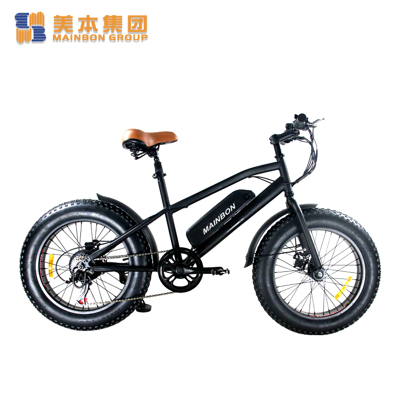 20 Inch Electric Bicycle Retailers Most Popular Fat Tire Snow Bike