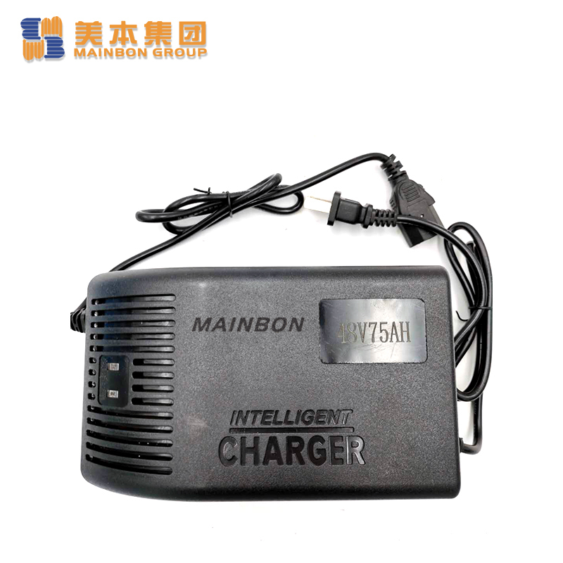 Electric Tricycle Parts 48v Battery Charger for E Rickshaw