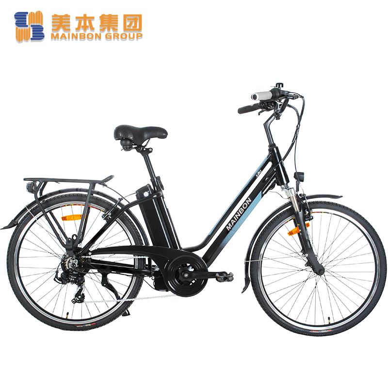 Customized Top 10 Electric Bicycles for Adults with Removable Lithium Battery